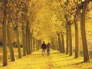 couple-promenade1